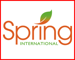 Spring International College